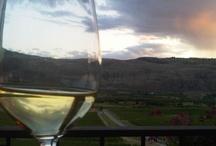 South Okanagan Wineries / by Savour Mag