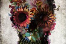 I Like / by Melissa Warner