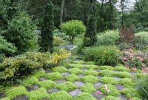 herb garden ideas / by Heidi Rawle Shinners