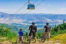 Mountain Bike @ Utah's Resorts / by Ski Utah