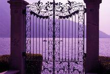 Some purple / by Brandi Shafer-Blalock