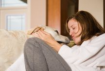 Hiring a Pet Sitter / Tips and information on finding and hiring a pet sitter. / by DogTipper.com