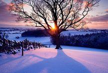 **  SNOW ** / by mahesh motiani