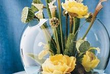 Flower Arranging Ideas / by Molly Stephan