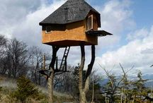 Wierd Places!!!!! / by pam king