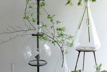 The Schwartz Haus / Little Green Ideas / by make+haus