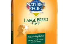 Dog | Life Stages Recipes / by Nature's Recipe
