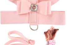 doggy/puppy wear shoes & accessories / by bella swan