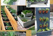 Garden : Love this Pot, Polanter, Container / by Ria Heliyanti