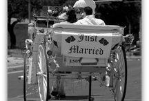 Wedding Transportation / by Diane Castro