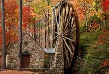 Autumn Love / by Kay Honeycutt