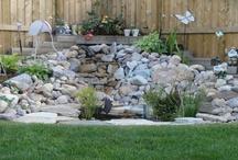 back yard potentials / by Karlie Abalos