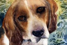 Beagles / by feona geurts