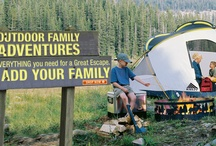 Camping / by Renee Hutchins
