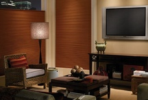 Home Theater Window Treatments / by BlindSaver