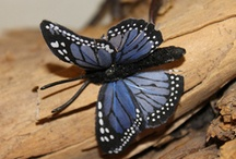 Butterflies & Insects / by Maria Vanderform