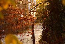 fall my favorite time of year / by Pamela Sada