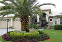 Tropical Gardener / Florida landscaping / by Roxanne Coyle