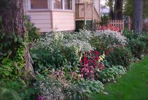 Cottage Gardens/House Exteriors III / by Susan Mitchell