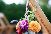 flowers / by Angie Walljasper