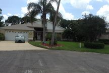 It's Florida! / Home Away / by Kim Rhinehart