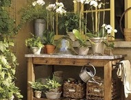Gardening & Yard Ideas / by Wanda | Bakersbeans