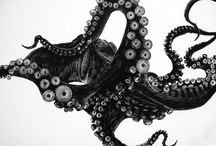 Octopus / by Babe Elliott Baker