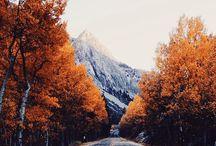 Wanderlust / by Kendall Garrett