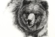 Illustrations - bears / Some of the many varied and wonderful illustrations of bears / by Wendy Chamberlain