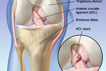 Fitness Injury and Recovery / by Mayo Clinic