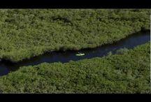 Key Largo / by Lodging Association