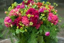 Flower Arrangements Plus / by Ladybug Wreaths, Nancy Alexander