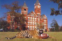 Auburn tigers / by George Terry Mckinney