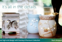 scentsy, safe candels / by Lilly Rivas-Waits