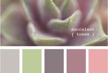 color palettes / by Rita Dippenaar