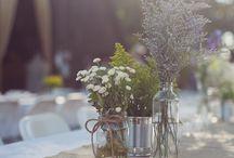 Leslie's Wedding / by Jen Hrycyk