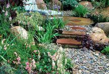 Gardens / by Megan Watt