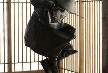 Suspension / by Ariane Lemoine