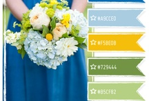 Wedding Colors / by Katherine Endres-Cox