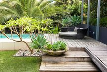 Exterior/Landscaping / by Ginger Diaz