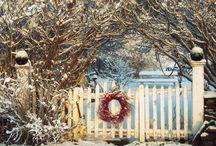 Winter wonderland / by Gemma Sands