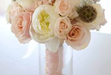 for the love of botany / Ideas for future floral design , and things I just love that are floral related. / by Tiffany Ball