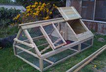 Chicken Coop Ideas / by Angie Lizaso