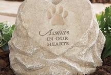 Precious Pets! ❤ / by Barbara Hainsworth