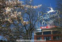 Portland / by Michelle Enders