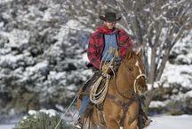 Oh yeah...cowboys!! / by Leah perales