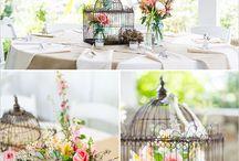 Wedding Ideas / by Kathy Ainge
