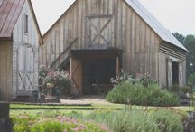 wedding ideas / by Mary Braisted
