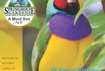 TRAVELHOST of Lexington/Bluegrass / #1 Travel & Destination Magazine for Lexington/Bluegrass Kentucky / by TravelHost