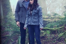 TwilightObsession<3 / by Danielle McWilliams